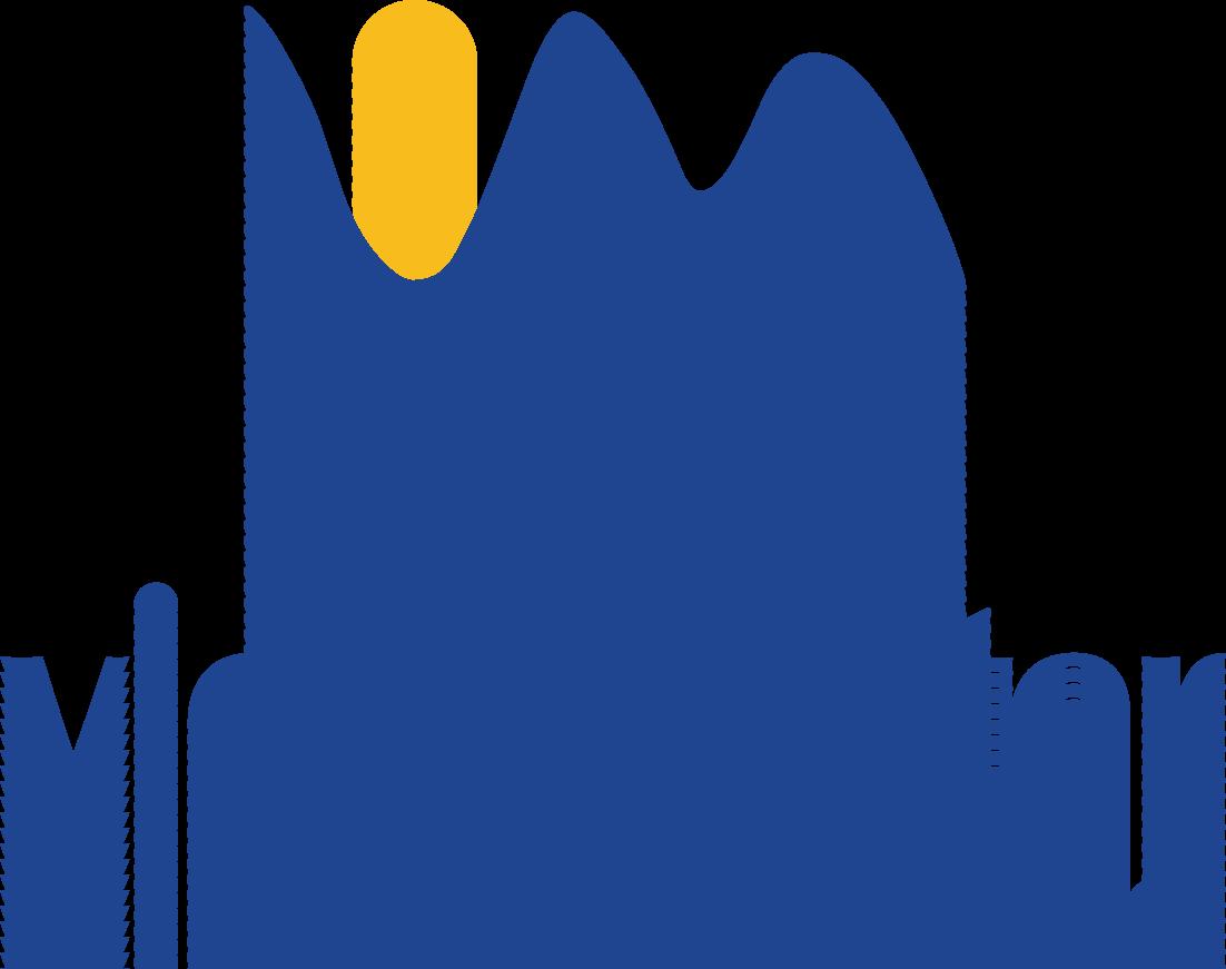 VMF_new logo